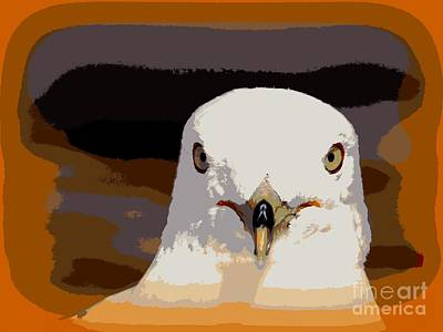 Photograph - Seagull Abstract by Ed Weidman