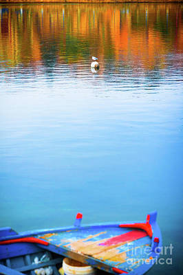 Photograph - Seagull And Boat by Silvia Ganora