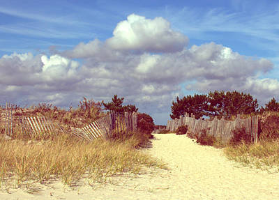 Photograph - Seagull Beach Entrance Color by Lori Pessin Lafargue