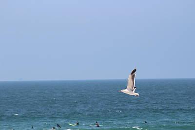 Seagull Flying Over Huntington Beach Art Print