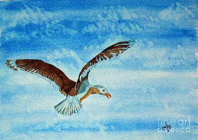 Seagull In Flight Art Print by Terri Mills