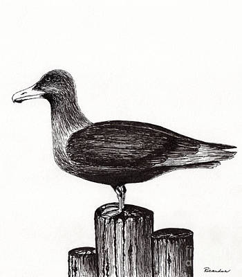 Seagull Portrait On Pier Piling E3 Art Print by Ricardos Creations