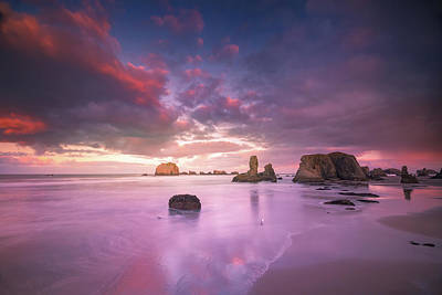 Photograph - Seagull Standing On Beach With Seastacks And Colorful Clouds by William Lee