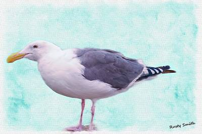 Digital Art - Seagull Standing by Rusty R Smith