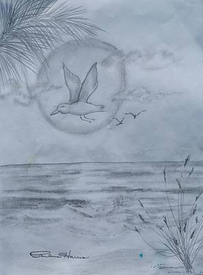 Ocean Sunset Drawing - Seagull Sunset by Carlene Harris
