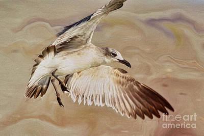 Seagull Swirl Art Print by Deborah Benoit