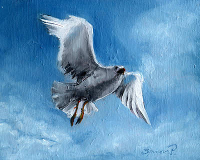 Painting - Seagull by Synnove Pettersen