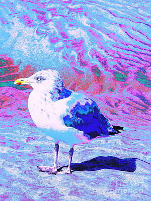 Digital Art - Cool And Colorful Gull by Expressionistart studio Priscilla Batzell