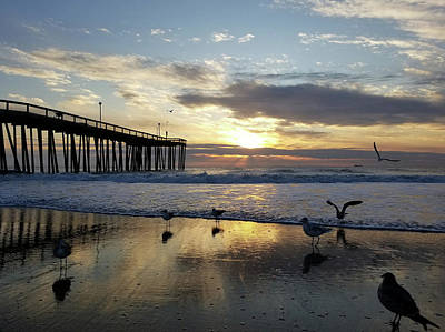 Photograph - Seagulls And Salty Air by Robert Banach