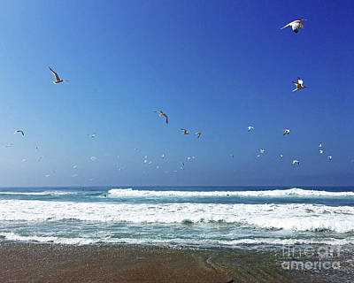 Photograph - Seagulls And Wave by Cheryl Del Toro
