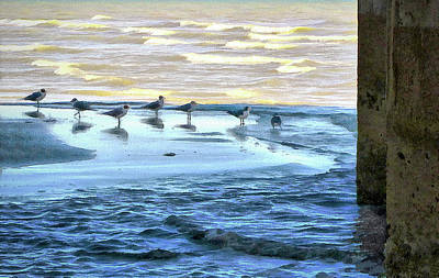 Photograph - Seagulls At Waters Edge by Cedric Hampton