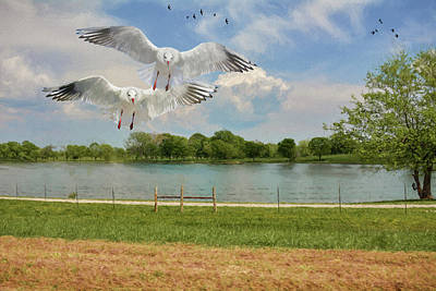 Painting - Seagulls By The Lake - Painting by Ericamaxine Price