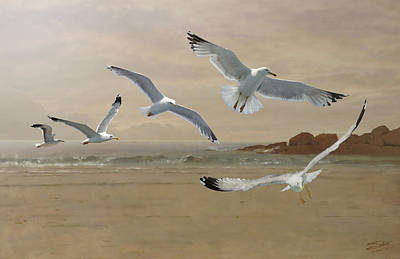 Painting - Seagulls Flying Along  The Beachfront by IM Spadecaller