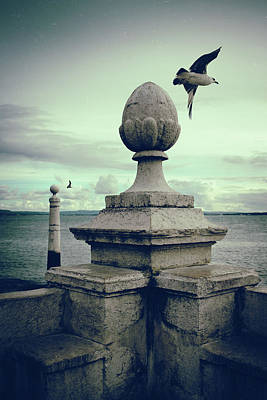 Seagulls In Columns Dock Art Print