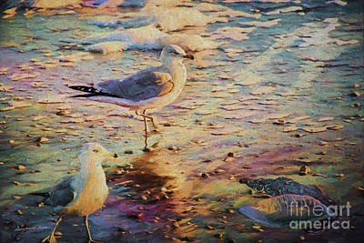 Digital Art - Seagulls Investigate Man Of War by Georgianne Giese