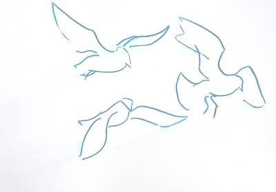 Seagulls Line Illustration Print by Mike Jory
