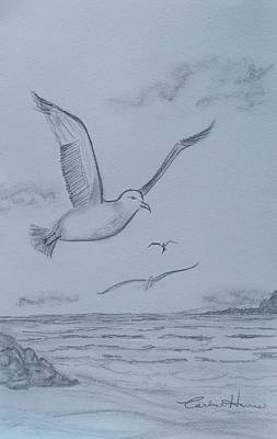 Seagulls Over The Ocean Original