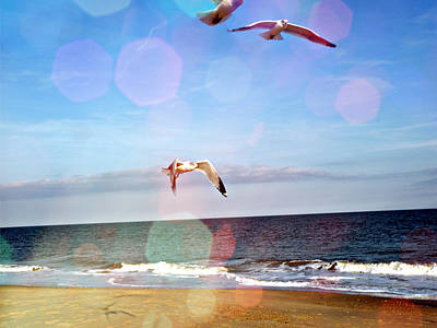 Seagull Mixed Media - Seagulls Take Me Away by Trish Tritz