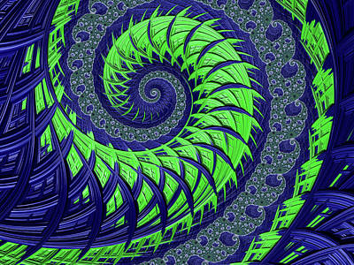 Digital Art - Seahawks Spiral by Becky Herrera