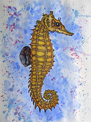 Seahorse Original by Daniel Butterworth