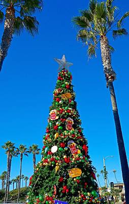 Photograph - Seal Beach Christmas Tree by Robert Meyers-Lussier