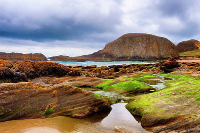 Photograph - Seal Rock  by Dee Browning
