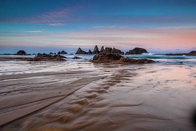 Photograph - Seal Rock Oregon by Andrew Soundarajan