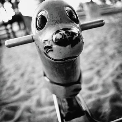 Photograph - Seal Spring Rider by YoPedro