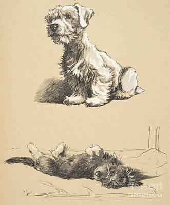 Sealyham And Rough Dachund Puppy, 1930 Art Print