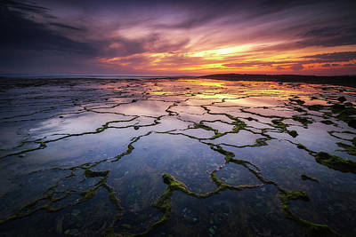 Photograph - Seanapse II by Ander Alegria