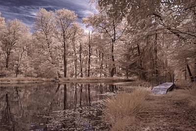 Photograph - Searl's Pond #2 by Fred Moore
