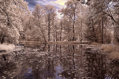 Photograph - Searl's Pond #3 by Fred Moore