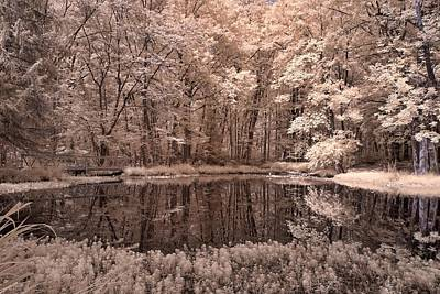 Photograph - Searl's Pond by Fred Moore