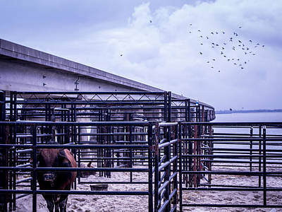 Of Rodeo Bucking Bulls Photograph - Seascape Bsl E50a by Otri Park
