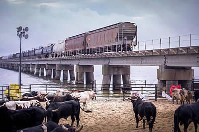 Of Rodeo Bucking Bulls Photograph - Seascape Bsl E60e by Otri Park