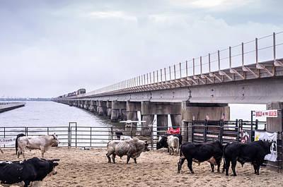 Of Rodeo Bucking Bulls Photograph - Seascape Bsl E60i by Otri Park