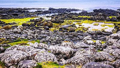 Photograph - Seascape Of Giants Causeway by Lexa Harpell