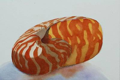 Painting - Seashell 1 by Judy Mercer