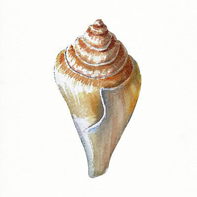 Painting - Seashell Art Beach Treasure Sea Shell IIi by Irina Sztukowski