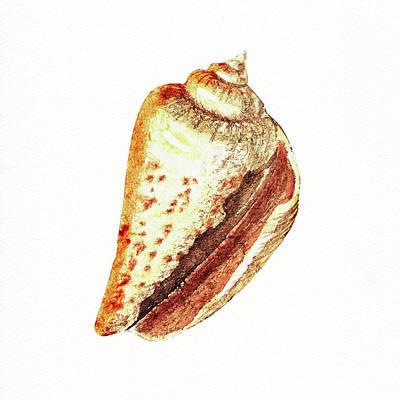 Painting - Seashell Art Beach Treasure Sea Shell V by Irina Sztukowski