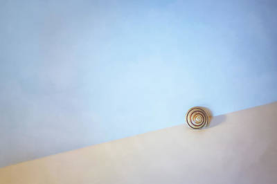 Minimalist Photograph - Seashell By The Seashore by Scott Norris