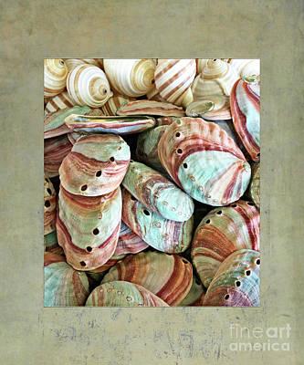 Photograph - Seashell - Colorful Abalones by Gabriele Pomykaj
