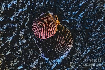 Digital Art - Seashell Comfort by Rachel Hannah