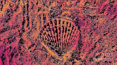 Digital Art - Seashell Delight by Rachel Hannah