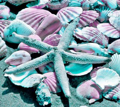 Photograph - Seashell IIi by Athena Mckinzie