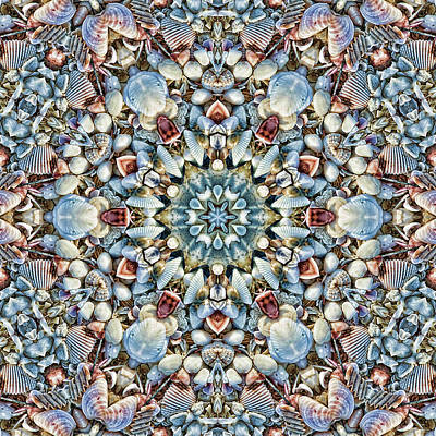 Photograph - Seashell Kaleidoscope by Cindi Ressler