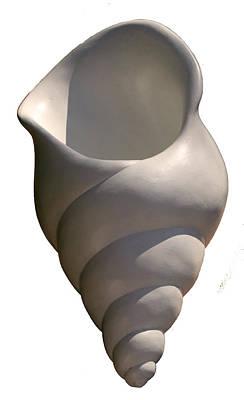 Seashell One Art Print