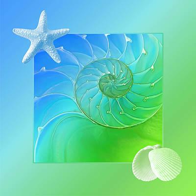 Photograph - Seashell Springtime Fantasy by Gill Billington