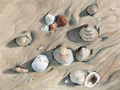 Hyperrealism Painting - Seashells 3 by Cathleen Savage