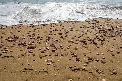 Photograph - Seashells And Footsteps - Lets Go To The Beach by Georgia Mizuleva